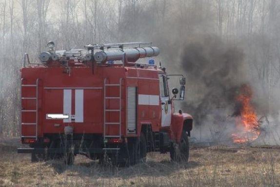 В лесу в Кирсановском районе загорелась сухая трава