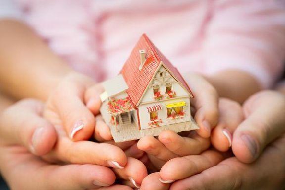 Многодетным семьям планируют выдавать компенсацию на погашение ипотеки