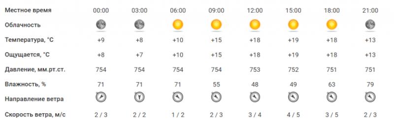 Выходные в Тамбове обещают быть солнечными и прохладными