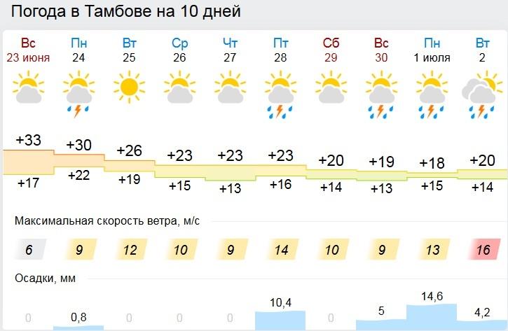 На смену аномальной жаре в Тамбов придёт резкое похолодание