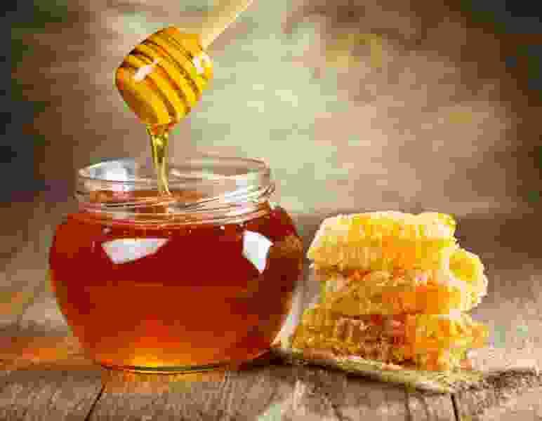 Массовая гибель пчёл не станет причиной ухудшения качества тамбовского мёда