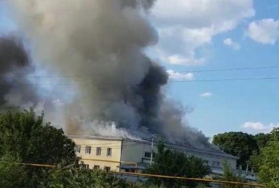 """Обзор за неделю: пожар на """"Мичурино молоко"""", литературный автобус в Тамбове, изменения в налоговых уведомлениях"""