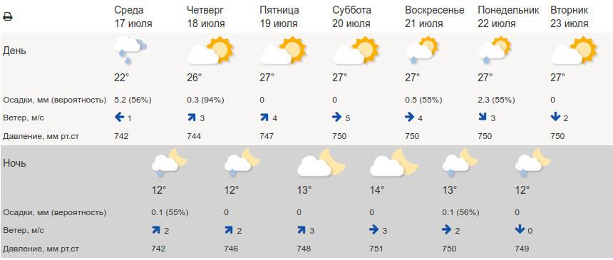 В конце недели в Тамбов вернётся солнечное и тёплое лето