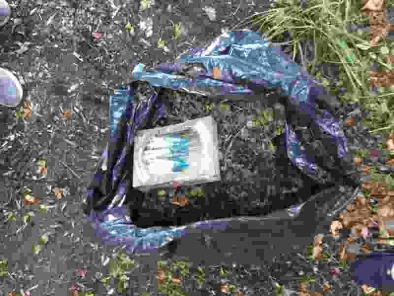 В Тамбове активисты начали не только кормить бездомных, но и убирать за ними шприцы