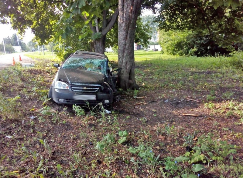 В Тамбовской области иномарка врезалась в дерево: водитель погиб