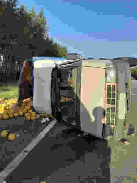 В Тамбовском районе иномарка протаранила «ГАЗель» с дынями, которые рассыпались по всей дороге