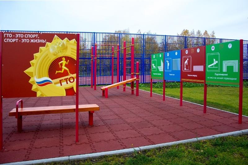 Покрытие спортплощадок для подготовки к сдаче норм ГТО в Тамбовской области обойдётся в 6,7 млн рублей