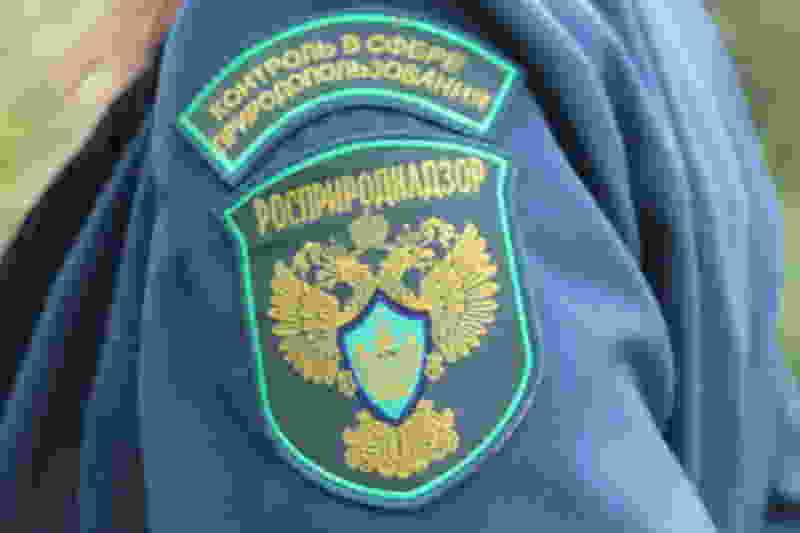 Прокуратура нашла нарушения в работе Росприроднадзора по Тамбовской области