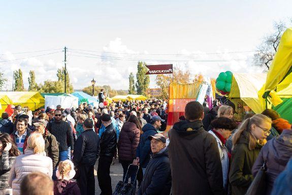 Покровская ярмарка в Тамбове в этом году показала рекордные результаты