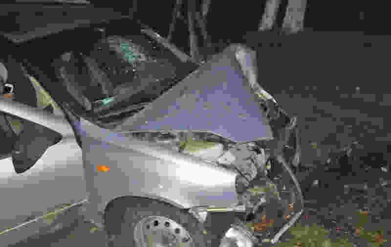 В Мичуринске 18-летний парень влетел в дерево: молодой человек в больнице