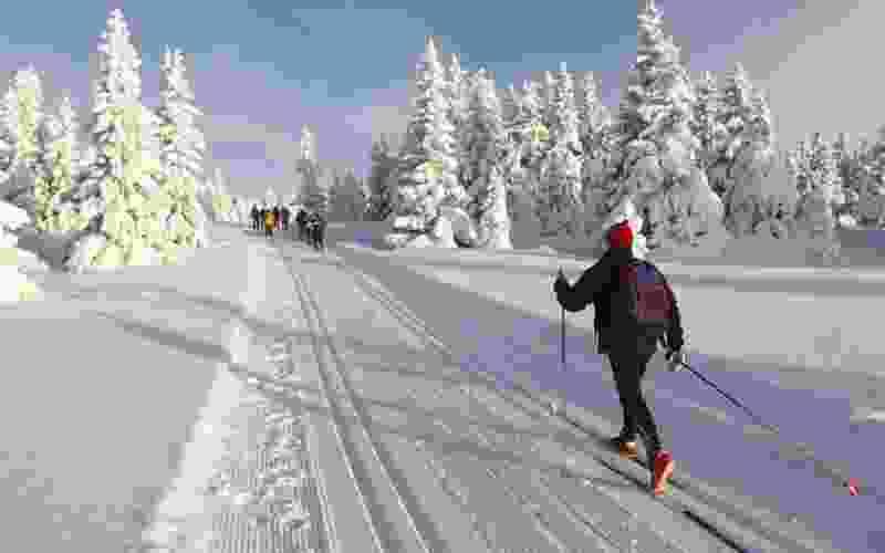 В Тамбове появится новая лыжная трасса и два новых парка