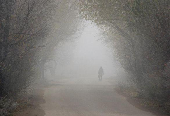Синоптики о погоде: после бесснежной зимы в Тамбов придут туманы и дожди