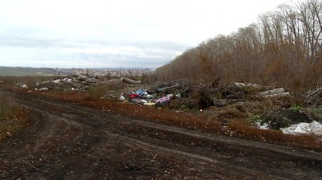 ВПензенском районе несколько летнемогут справиться состихийной свалкой