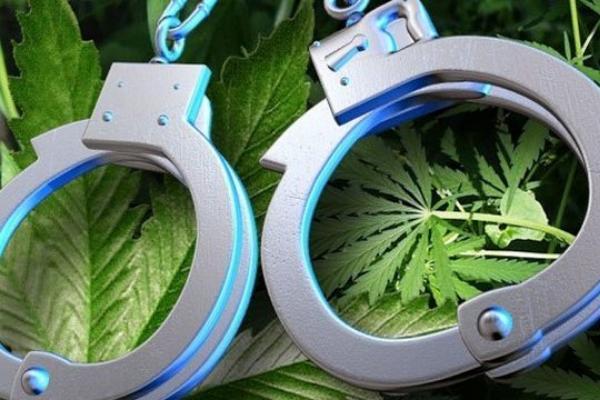 В Тамбовской области задержаны двое мужчин по подозрению в незаконном обороте наркотиков
