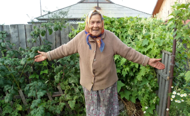 В Тамбовском лесхозе заложат малиновый сад по акции «Бабушкино варенье»
