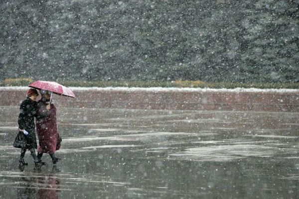 В выходные тамбовчан погода проверит на выносливость