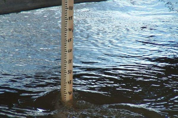 Жители Сосновского района обеспокоены резким падением уровня воды в реках