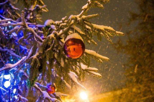 Синоптики рассказали о погоде в Тамбове в новогоднюю ночь