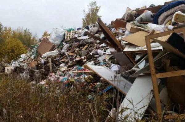 В Тамбовском районе в 100 метрах от жилого дома образовалась незаконная свалка