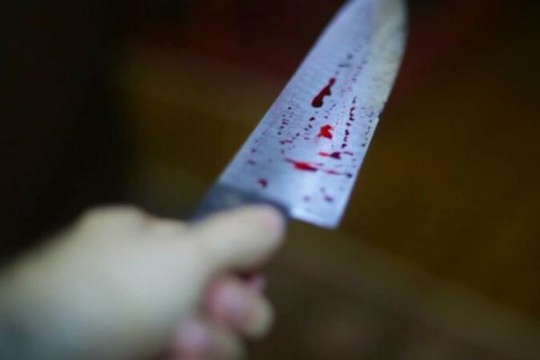 Ударивший несколько раз друга ножом житель Тамбовской области предстанет перед судом