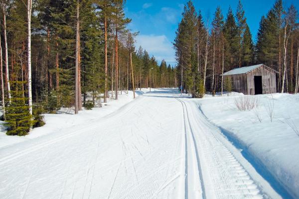 В Тамбовской области благоустроили лыжную трассу
