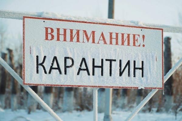 Ещё в трёх районах Тамбовской области объявлен карантин по бешенству
