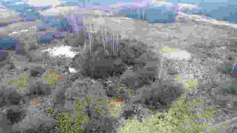 Поисковики нашли тамбовского лётчика, спасшего целую деревню