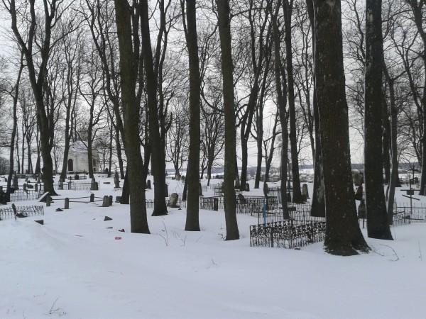В Тамбове задержали мужчину, который несколько дней назад надругался над несовершеннолетней девочкой рядом с кладбищем