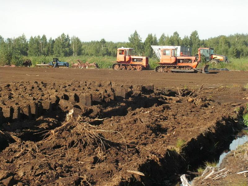 В Тамбовской области хотят разработать торфяное месторождение