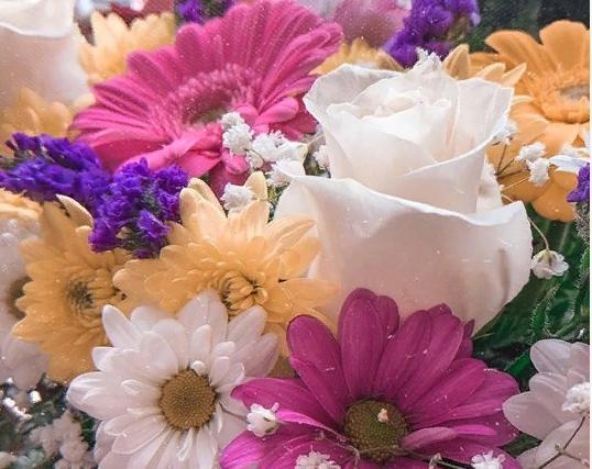 Репортаж из соцсетей: какие подарки получили женщины в Тамбове 8 марта