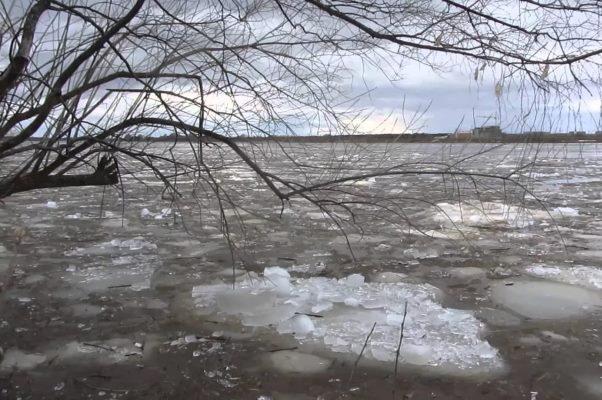 В ближайшие дни вода в Цне может подняться на три метра