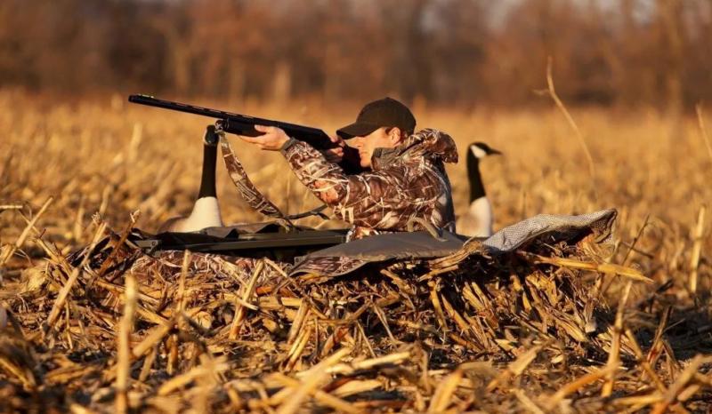 В Тамбовской области открывается весенний охотничий сезон