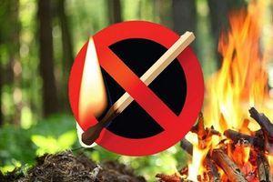 Будьте осторожны! В Тамбове сохраняется высокая пожароопасность