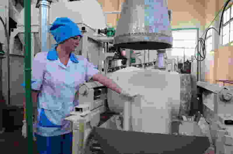 Никифоровский районный суд отклонил иск уволенных женщин с сахарного завода