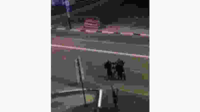 Тамбовские следователи начали проверку видео, где правоохранители избивают мужчину