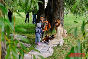 ВТамбове открывается сезон «Поэтических пикников»