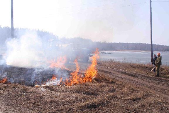 В Тамбовской области запрещено разводить костры и использовать открытый огонь