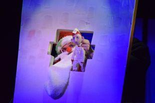 Надень города вТамбове проведут первый фестиваль кукол