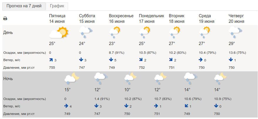 Передышка от жары в Тамбовской области будет недолгой