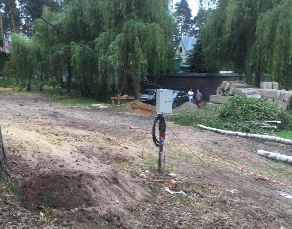 Тамбовчане недовольны вырубкой Пригородного леса
