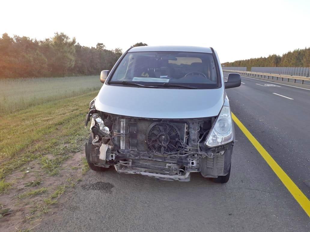 """В Никифоровском районе """"Форд"""" протаранил """"Хендай"""": один водитель пострадал"""