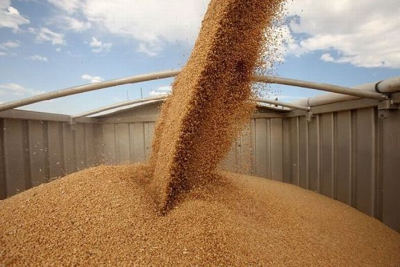 В Сосновском районе двух жителей республики Дагестан осудили за кражу зерна