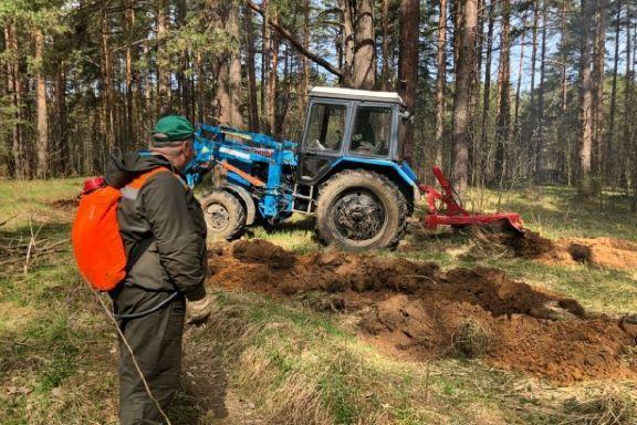 В Тамбовской области лесные патрули работают в усиленном режиме