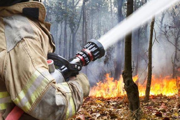 В Тамбовской области прогнозируется чрезвычайная пожарная опасность