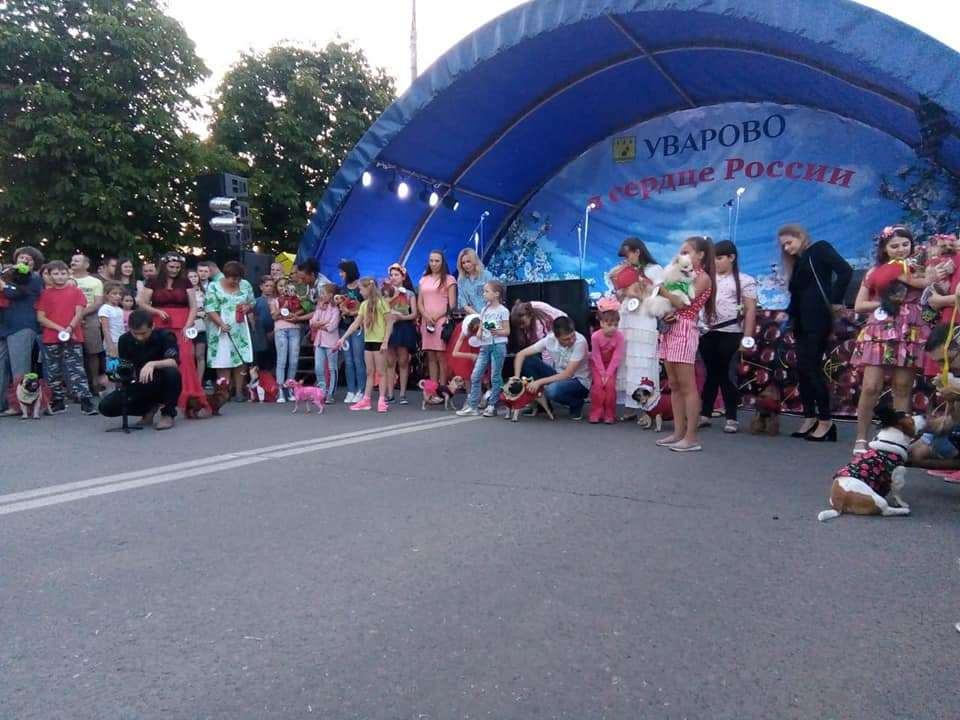 """Костюмированное шествие и показ моды для собак: стартовал гастрономический фестиваль """"Вишневарово"""""""