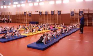 Спортивные достижения тамбовских школ