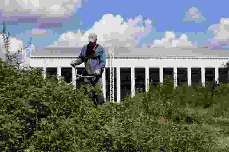 В Олимпийском парке в Тамбове построят сцену с олимпийскими кольцами