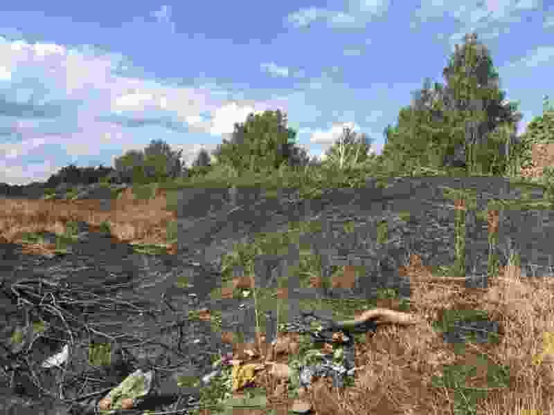 Жители Тамбова используют землю с Татарского вала для ухода за могилами
