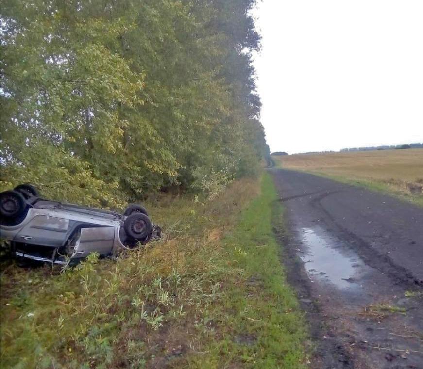 На грунтовой дороге в Мордовском районе перевернулась иномарка