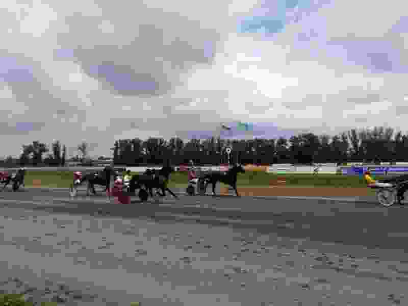 На тамбовском ипподроме в честь дня рысистого коннозаводства прошёл легендарный заезд рысаков